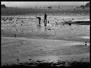 Alan Birkin ~ Bait Diggers
