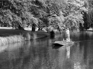 Graham Bostock ~ Just a Punt