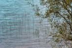 Judith Newton ~ Reflection