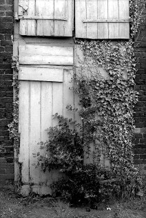 Judith Newton ~ The Old Door
