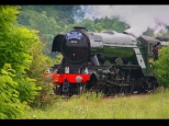 Mick Jerham ~ Flying Scotsman