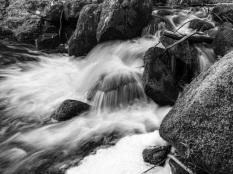 Ray Bates ~ Padley Gorge