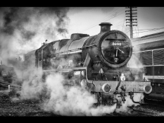 Roy Lewin ~ Letting Off Steam