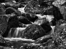 Roy Maddison ~ Padley Gorge