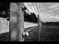 Silke Neugaertner ~ Borders