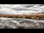 Silke Neugaertner ~ Grass in the Clouds