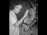 Silke Neugaertner ~ Horse whisperer