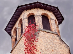 John Stuart ~ Weeping window